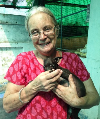 Veterinary nurse Elaine holds a puppy at the Arunachala Animal Sanctuary.