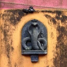 Cobra temple in the Brahmin quarter, Gokarna