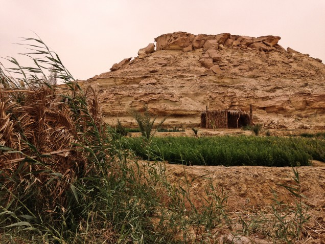 View from  from a small farm to a hill full of fossils and tombs, at the north edge of Siwa Oasis.