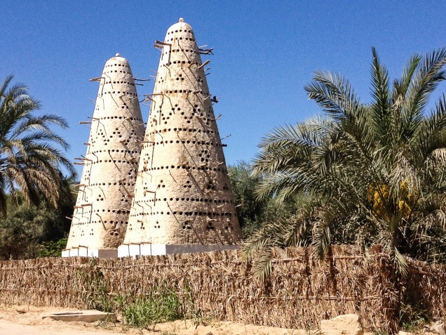 Traditional pigeon houses in Siwa Oasis