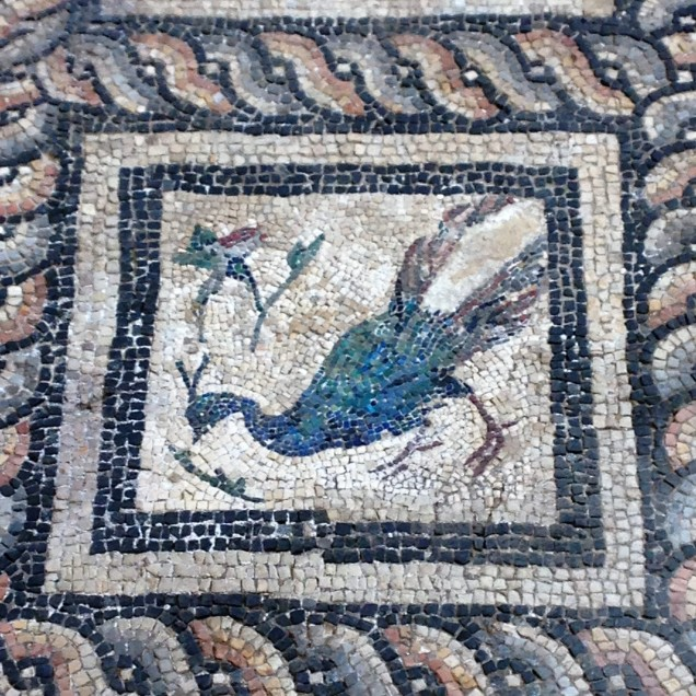 A mosaic of a peacock