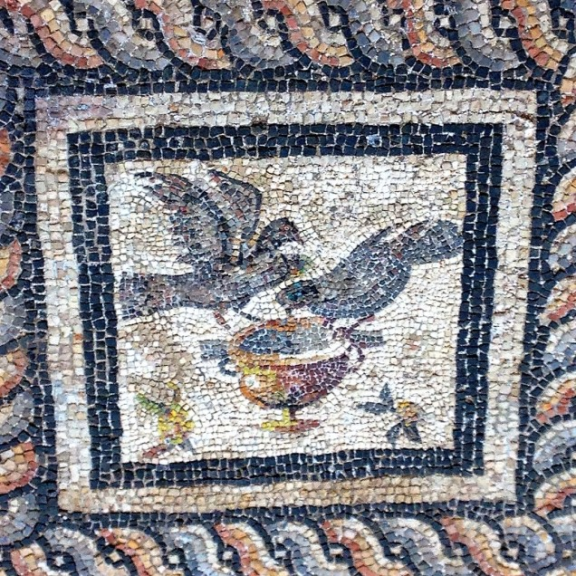 A mosaic portraying pigeons
