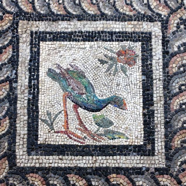 Mosaic of a swamp hen