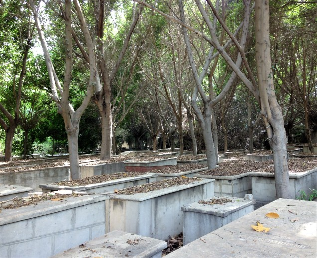 Tombs covered in leaves, Jewish cemetery of Alexandria