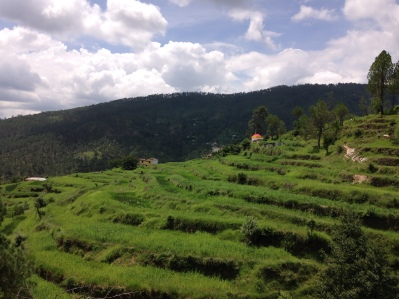 Heading to new temple in Balta valley, Almora, Uttarakhand