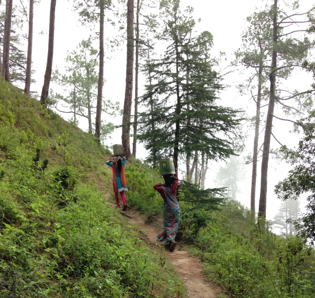 Ladies carrying cans of water from the spring to their homes. Near Papershali, Balta Bari, near Almora, Uttarakhand.