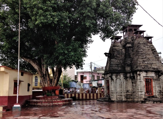 One of Nanda Devi's two thousand-year-old temple towers, and its ancient peepul tree. Almora, Uttarakhand.