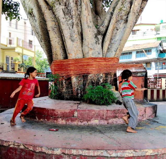 Two sisters chase each other around the ancient peepul tree at Nanda Devi Temple, Almora, Uttarakhand