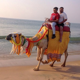 Tourists on camel, side view. Puri, Odisha