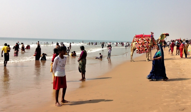 Tourists and camel on beach, Puri, Odisha