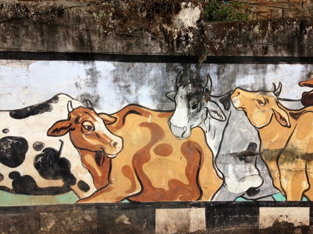 Cows on wall mural in Guwahati